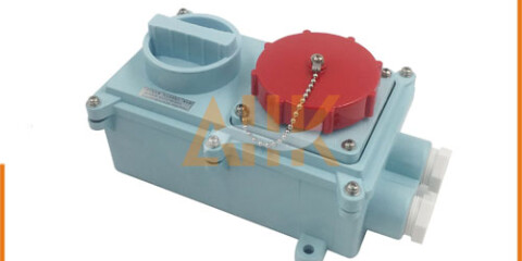 Watertight Receptacle With Interlock Switch